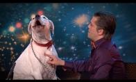 Šuo dainuoja Whitney Houston dainą
