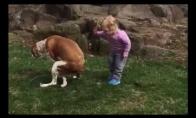 Mažos mergaitės palaikymas šikančiam šuniui