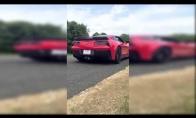 Durnelis sudaužo naujutėlaitę Corvette