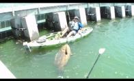 Nekuklus žvejo laimikis