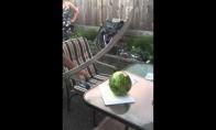 Kaip nereikėtų pjaustyti arbūzo?