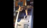 Bankomato apsauginis