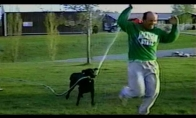 Šuns kerštas šeimininkui