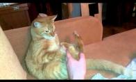 Kai katino kojos neklauso