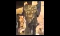 Troliai Sirijoje