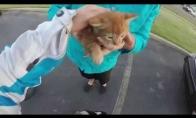 Motociklininkė išgelbsti katiniuką