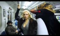 Pingvinai puola metro