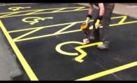 Kaip paišomi neįgaliųjų parkingai?