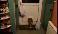 Siauros durys