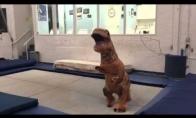 Dinozauras šokinėja