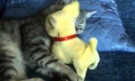Žaislas trukdo miegoti