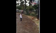 Taip auga krepšininkai