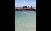 Ryklys pliaže