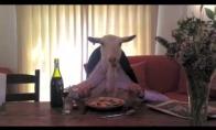 Ožka pusryčiauja