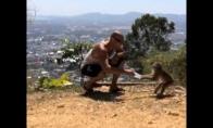 Beždžionė pavogė vandenį