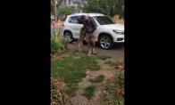 Šunelis sutinka savo šeimininką po 8 mėnesių