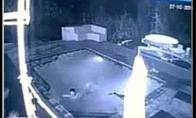 Krokodilas užpuola baseine besimaudančią porelę
