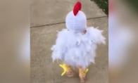 Geriausias viščiuko kostiumas