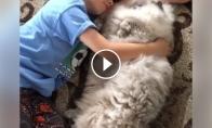 Vaikas su itin pūkuotu katinu