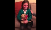 Mergaite Kalėdoms gauna šuniuką