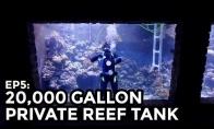 Vaikinas pasidarė 76000L akvariumą
