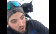 Katiniukui patinka leistis rogutėmis