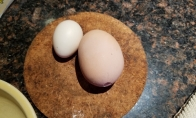 Super kiaušinis