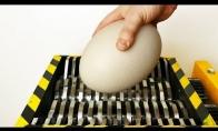 Malam kiaušinius
