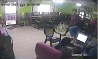 Gyvatė Interneto kavinėje