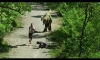 Žiaurus dinozauro pokštas