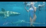 Po*no aktorei įkanda ryklys