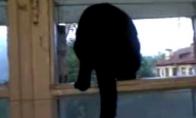 Katė loja kaip šuo kol jos nepamato
