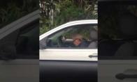 Senukas taškosi automobilyje