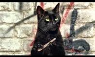 Katės su nykščiais