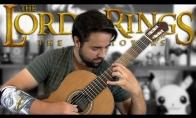 Žiedų Valdovo gitaros coveris