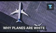 Kodėl lėktuvai dažomi balta spalva