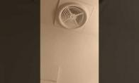 Juokingas ventiliatorius