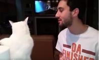 Katė gerai kabliuoja
