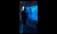 Netikėta ryklio ataka