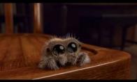 Mieliausias voras pasaulyje