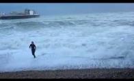 Šunelis išgelbstimas iš audringos jūros