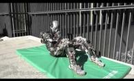 Atletiškas robotas