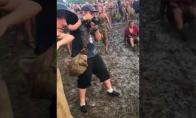 Purvinas festivalis