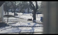 Kaimynas pjauna žolę žiemą