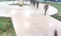 Pikta žąsis prieš JAV armiją