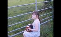 Serenada karvėms