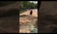 Motociklininkas be galvos