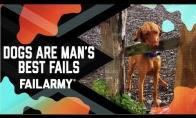 Šunelių FAIL rinkinys