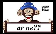 Seimo beždžionėlės nuotykiai Palangoje