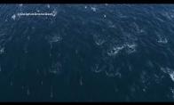 Didžiulis būrys delfinų plaukia žvejotis tuno